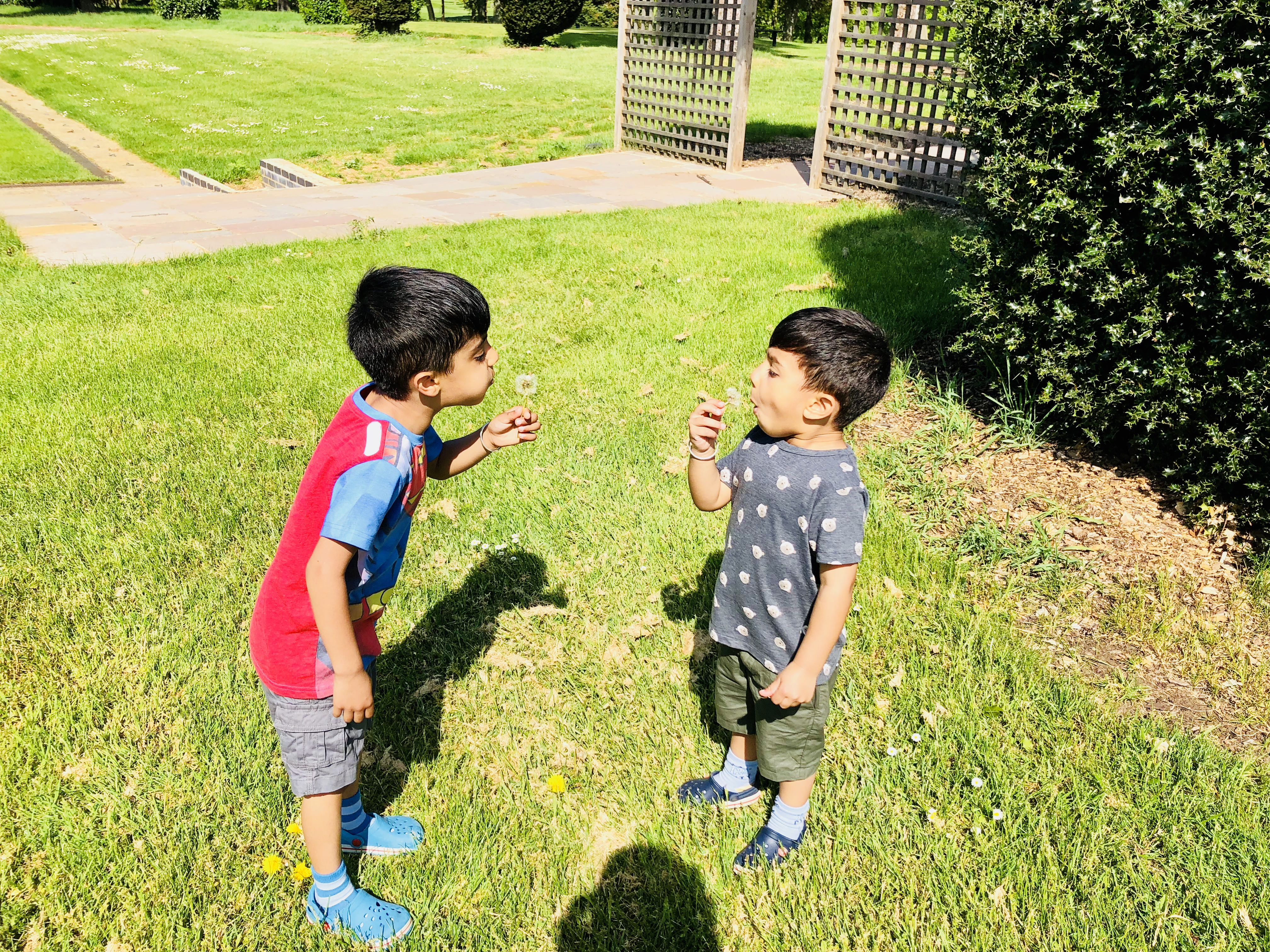 two brothers blowing dandelion flowers in bright clothes